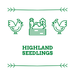 highland seedlings